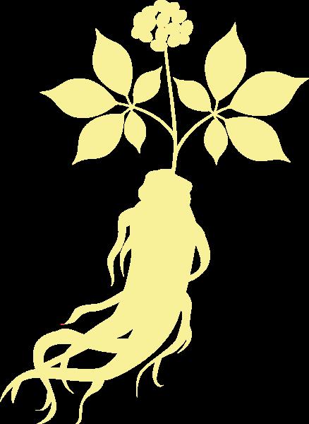 Ginseng Icon yellow