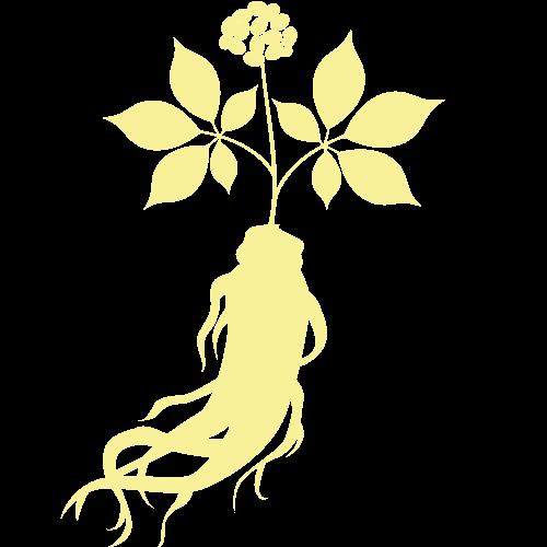 Ginseng braun PNG