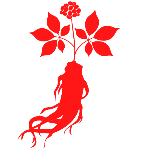Ginseng rot PNG